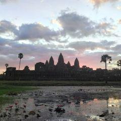 Siem Reap Angkor Driver User Photo