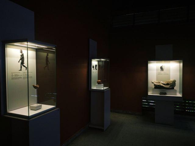 National Museum of Tanzania