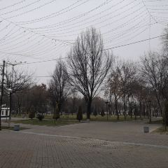 Amir Timur Maydoni User Photo