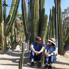 샤먼 원림식물원(하문 원림식물원) 여행 사진