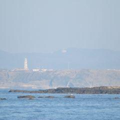 城ケ島張用戶圖片