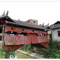 慶元古橋用戶圖片
