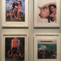 邦尼爾美術館用戶圖片