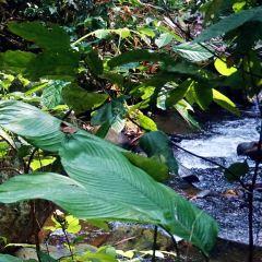 Khun Korn Waterfall User Photo