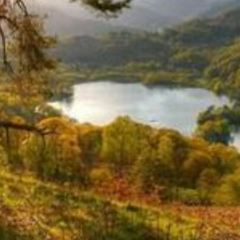 賴德爾湖用戶圖片