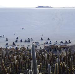 Isla del Pescado User Photo