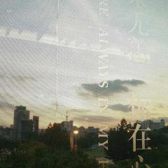覓云云南菜·翎韻(正大廣場店)用戶圖片