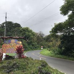 Kauai Coffee Company User Photo