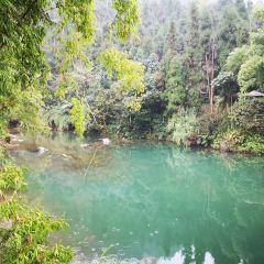 Qingyin Pinghu Lake User Photo