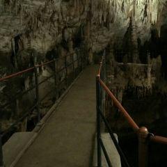波斯托伊納溶洞用戶圖片