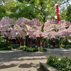 성황각관광지 여행 사진