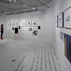 藝術教育博物館用戶圖片
