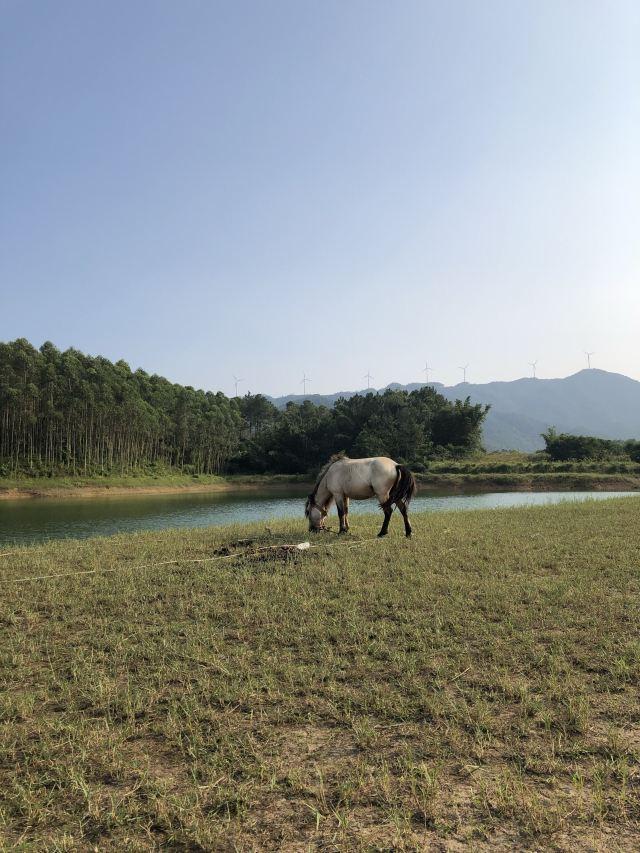 The Xuehuang Grassland