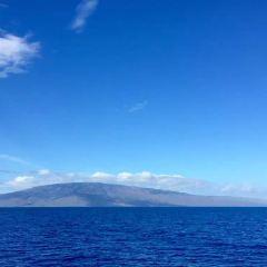 Molokai User Photo