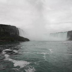 霧の乙女号のユーザー投稿写真