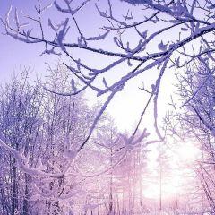 Wulan Mountain User Photo