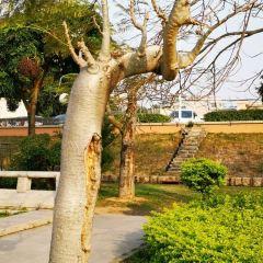 Fenghuangzhou Park (Northwest Gate) User Photo