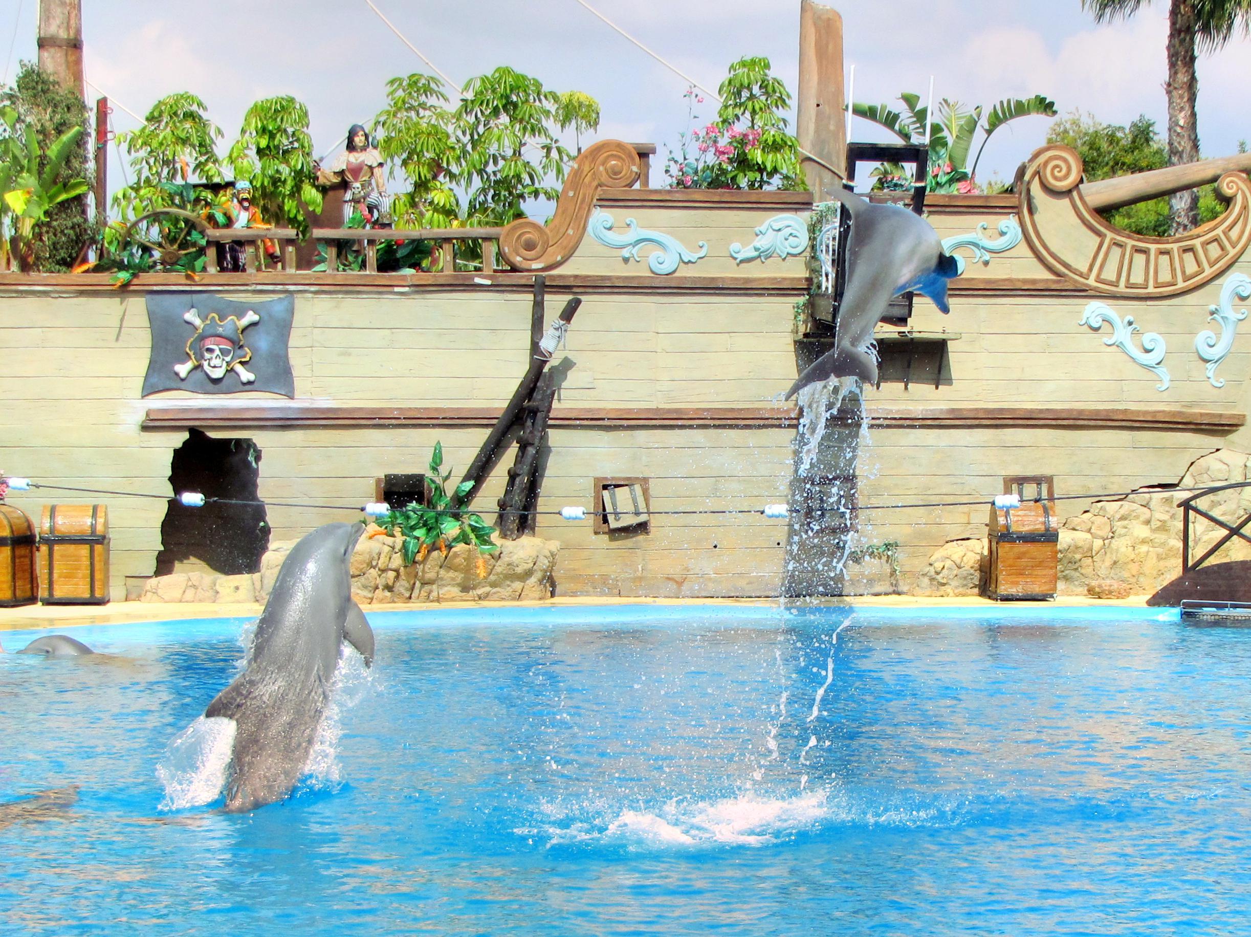 海洋世界水族館