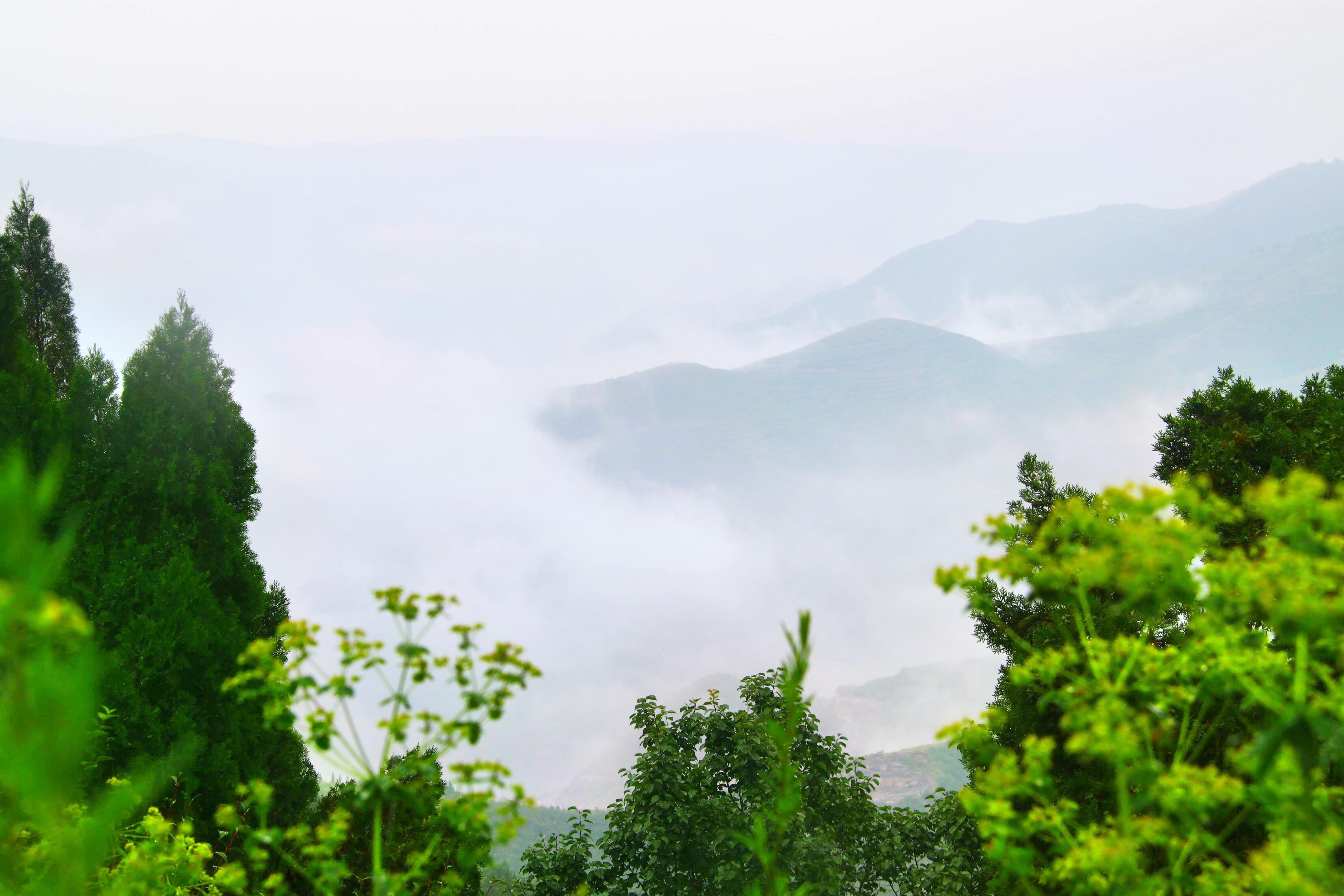 Jinsu Mountain Forest Park