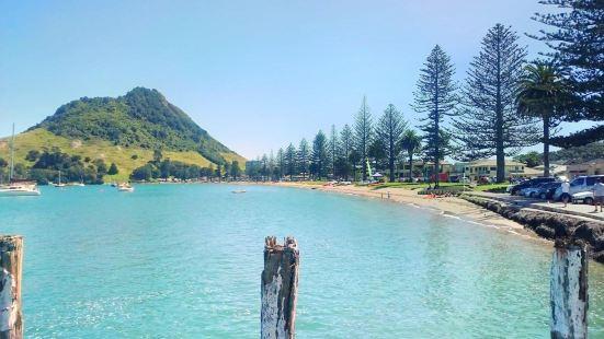 Pilot Bay Beach