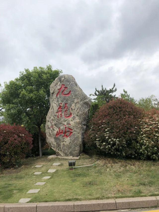 Jiulongyu