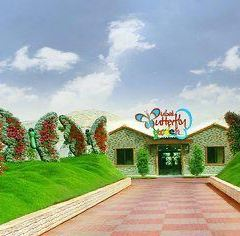 Dubai Butterfly Garden User Photo