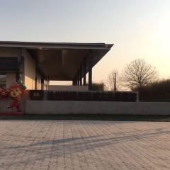 Cangzhou Lron Lion and old city site park User Photo