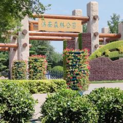 Jinan Forest Park User Photo