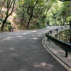 Sightseeing Corridor User Photo