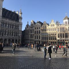 City Hall of Brussels User Photo