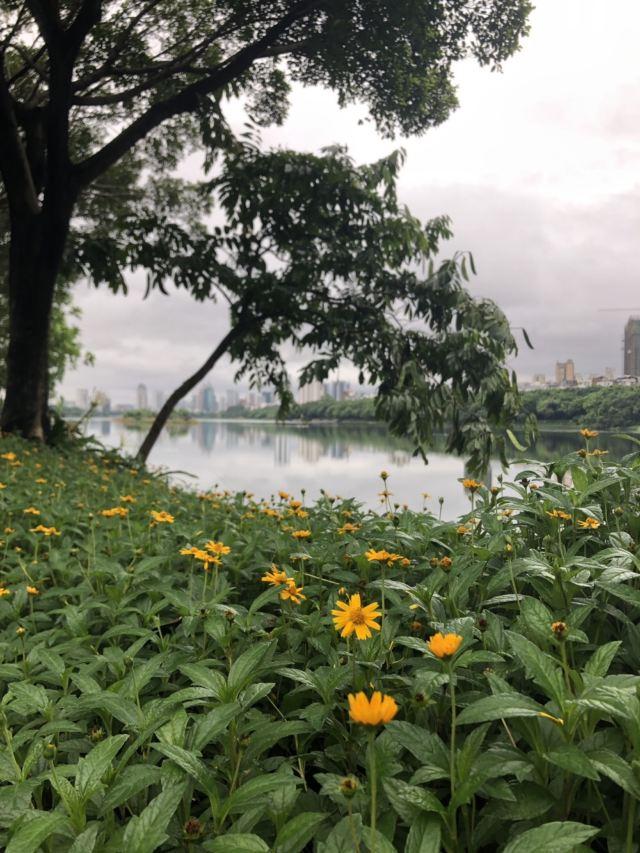 난후 공원