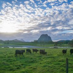 Glass House Mountains National Park User Photo