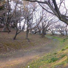 Mt. Hachiman Tomb User Photo