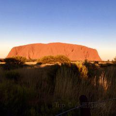 Uluru Car Sunset Viewing Area User Photo