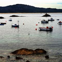 Puerto Jimenez Marina User Photo