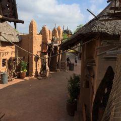 夢幻樂園用戶圖片