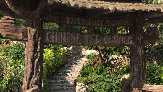 进入这个公园,就是踏入自然的大门你喜欢散步吗?你喜欢与大自然
