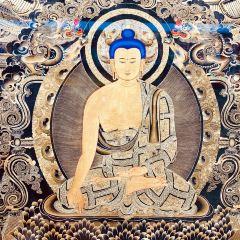 黃南州熱貢畫院用戶圖片