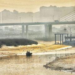 Jinjiang Wetland User Photo