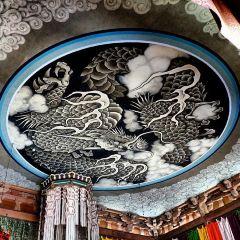 光明寺張用戶圖片