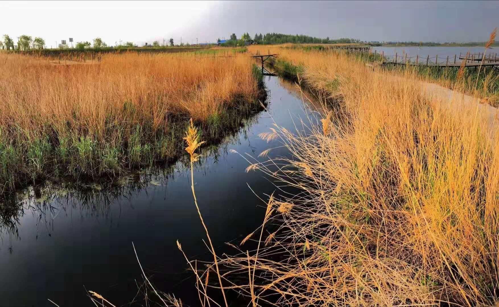 Longteng Wetland Hot Spring