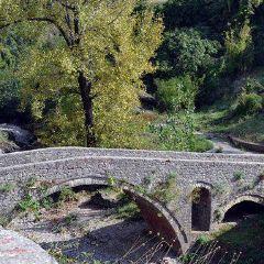 Ribnica Bridge (Most na Ribnici)用戶圖片