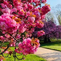 파리공원 여행 사진