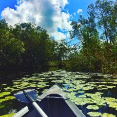 Everglades User Photo