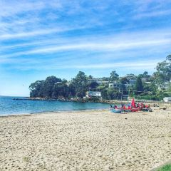 Kingston Beach User Photo