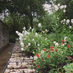 The Hidden Gardens User Photo