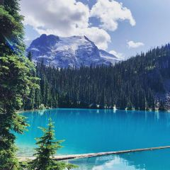 Duffey Lake Provincial Park User Photo