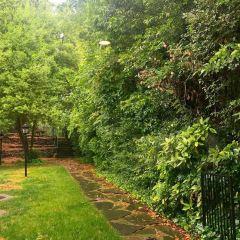 Ansley Park User Photo