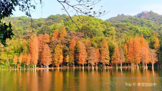 Huangpodong Reservoir