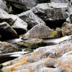 Wilderness National Park用戶圖片